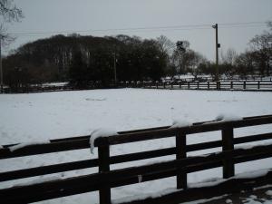 Outdoor schools under snow