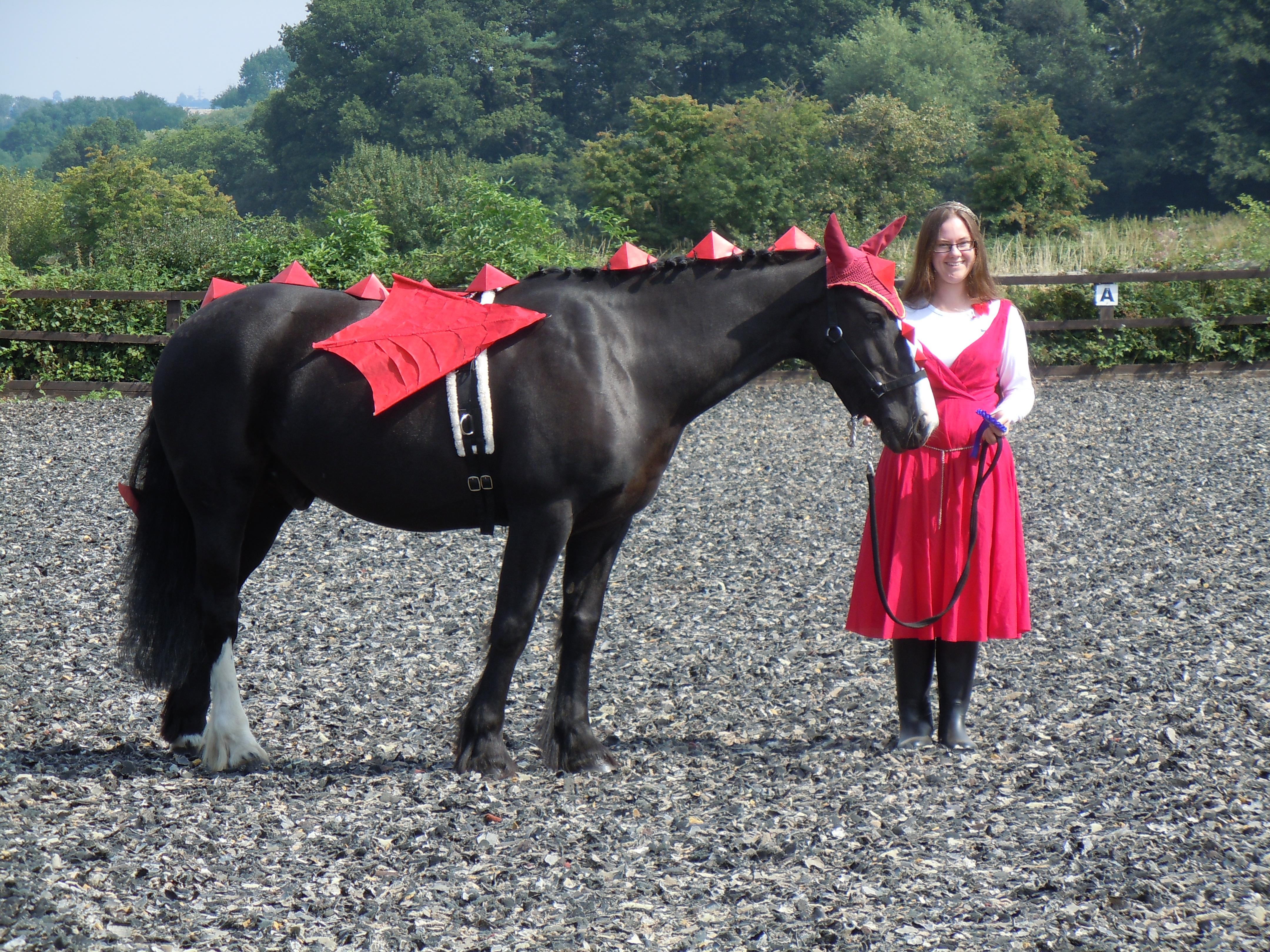 Horse Fancy Dress Sparrowgrass